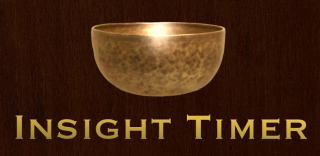 Insight Timer programa