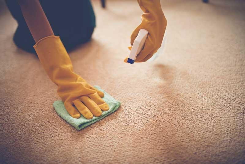 Dėmių valymas nuo kilimo