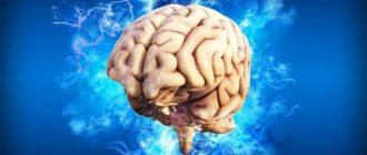 Kaip išlaikyti smegenis jaunas